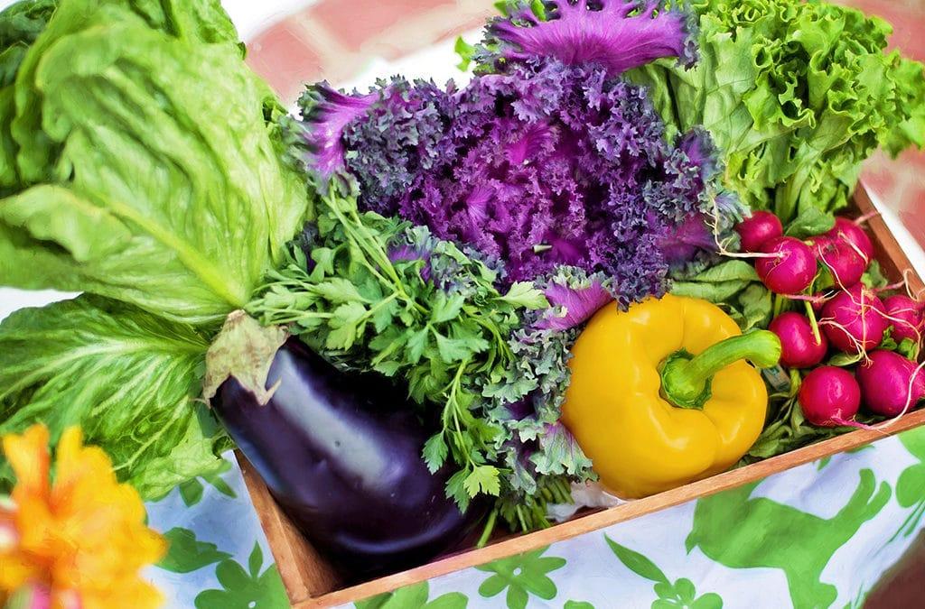 Naturopathie : quels sont les aliments acidesacidifiants et basiques ?