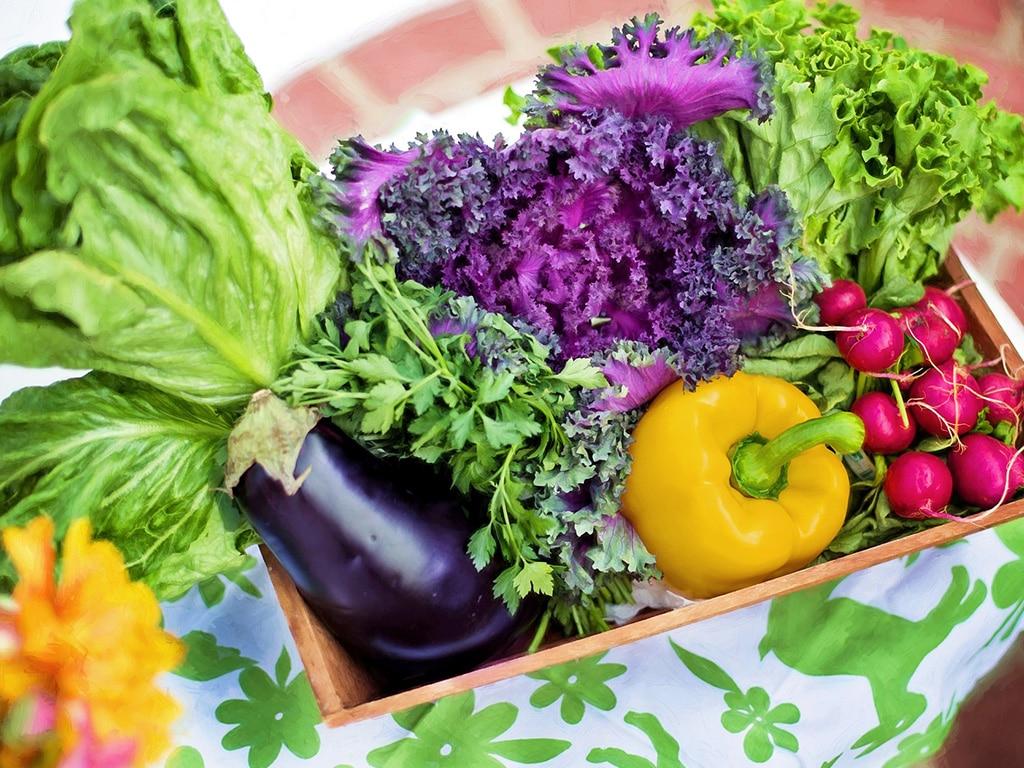 Naturopathie : quels sont les aliments acidesacidifiants alcalins ou basiques ?