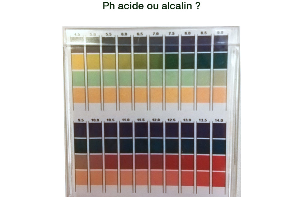 Naturopathie : comment mesurer mon degré d'acidité ?