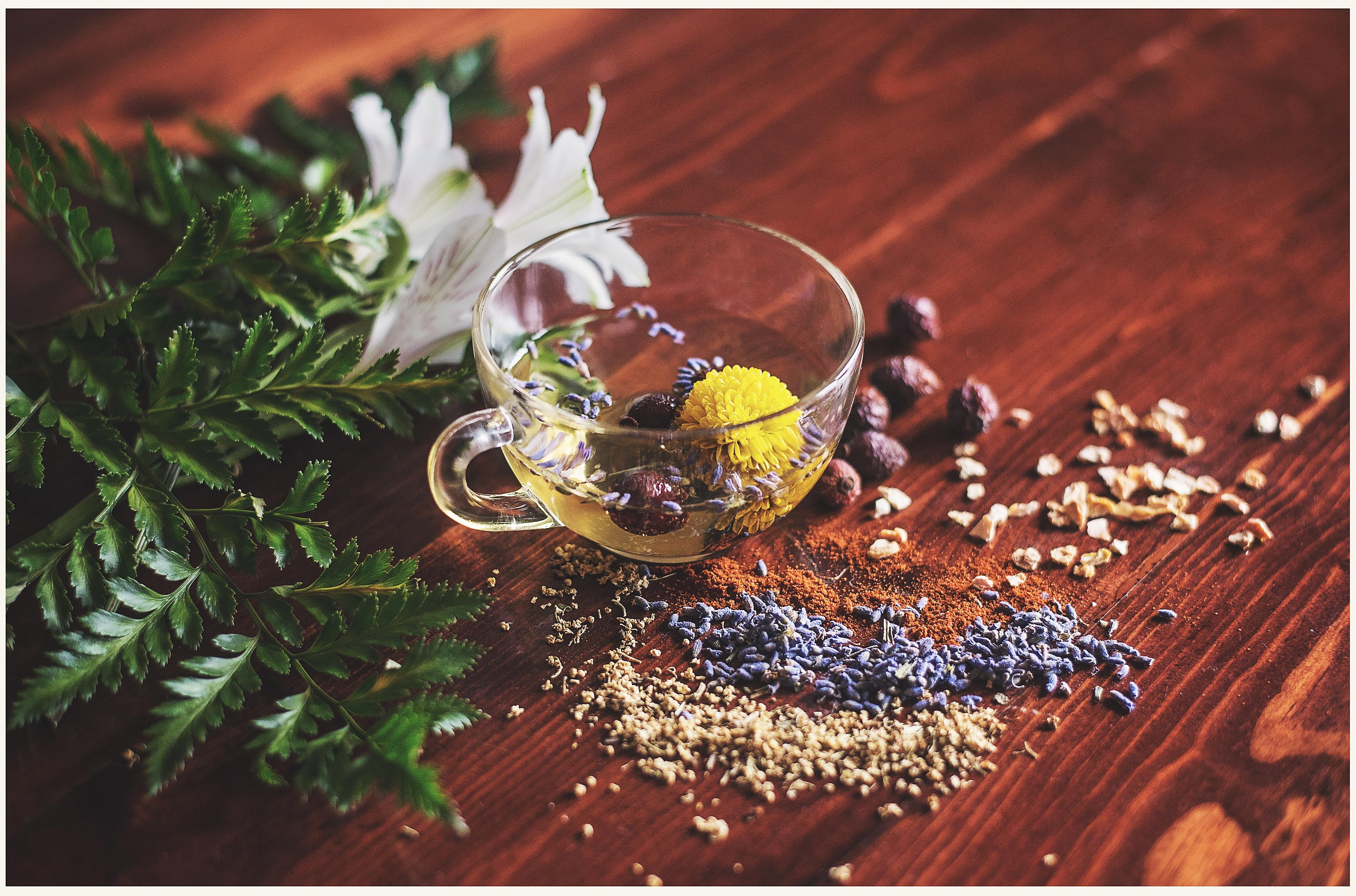 vanessa-lopez-blog-naturopathie-remboursement-reiki-naturopathie